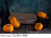 Купить «Маленькие тыквы и салфетки на деревянном столе», фото № 12851488, снято 28 сентября 2015 г. (c) Елена Веселова / Фотобанк Лори