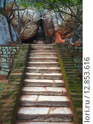Купить «Старая каменная лестница, крепость Сигирия Lion Rock, Шри Ланка», фото № 12853616, снято 20 марта 2015 г. (c) Михаил Коханчиков / Фотобанк Лори