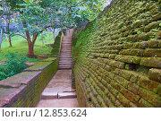 Купить «Старая каменная стена и лестница, крепость Сигирия Lion Rock, Шри Ланка», фото № 12853624, снято 20 марта 2015 г. (c) Михаил Коханчиков / Фотобанк Лори