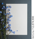 Купить «Открытка с живыми цветами незабудками», фото № 12874908, снято 13 мая 2014 г. (c) Мурина Ольга / Фотобанк Лори