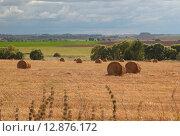 Пейзаж со скошенным полем в средней полосе России. Стоковое фото, фотограф Косоуров Юрий / Фотобанк Лори