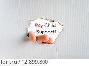 Купить «Pay child support text concept», фото № 12899800, снято 21 февраля 2020 г. (c) PantherMedia / Фотобанк Лори