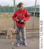 Купить «Волонтер женщина с собакой из приюта», фото № 12906428, снято 7 сентября 2012 г. (c) Елена Мусатова / Фотобанк Лори