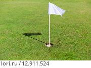 Купить «close up of flag mark in hole on golf field», фото № 12911524, снято 30 августа 2015 г. (c) Syda Productions / Фотобанк Лори