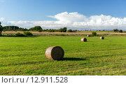Купить «haystacks or hay rolls on summer field», фото № 12911528, снято 30 августа 2015 г. (c) Syda Productions / Фотобанк Лори