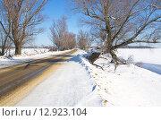 Купить «Зимняя дорога», эксклюзивное фото № 12923104, снято 4 марта 2013 г. (c) Елена Коромыслова / Фотобанк Лори
