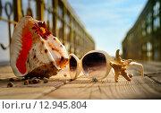 Летний пляж отдых. Стоковое фото, фотограф Наталья Буравлева / Фотобанк Лори