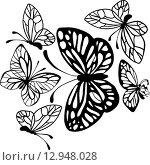 Черные бабочки на белом фоне. Стоковая иллюстрация, иллюстратор Ирина Тарарыкова / Фотобанк Лори