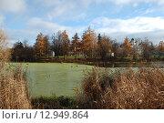 Купить «Нижний Голицинский пруд в усадьбе Большие Вязёмы Одинцовского района Московской области», эксклюзивное фото № 12949864, снято 5 ноября 2010 г. (c) lana1501 / Фотобанк Лори