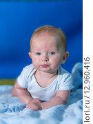 Портрет маленького ребенка на синем покрывале. Стоковое фото, фотограф Евгений Чернышов / Фотобанк Лори