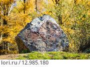 Камень в лесу. Стоковое фото, фотограф Sergey Borisov / Фотобанк Лори