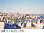 Купить «Вид на Стамбул и крыши мечети Сулеймания», фото № 12987248, снято 13 мая 2015 г. (c) Наталья Волкова / Фотобанк Лори