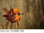 Купить «Хэллоуин, украшение на столе», фото № 12988136, снято 11 октября 2015 г. (c) Ирина Новак / Фотобанк Лори