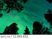 Северное сияние и звезды. Стоковое фото, фотограф Максим Судоргин / Фотобанк Лори