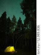 Палатка в лесу под звездами. Стоковое фото, фотограф Максим Судоргин / Фотобанк Лори