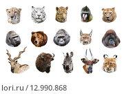 Купить «Портреты млекопитающих, коллаж», фото № 12990868, снято 18 сентября 2015 г. (c) Наталья Волкова / Фотобанк Лори