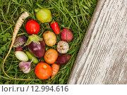 Осенний урожай овощей. Стоковое фото, фотограф Виктор Колдунов / Фотобанк Лори