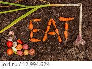 Слово EAT из моркови и различные овощи на земле. Урожай. Стоковое фото, фотограф Виктор Колдунов / Фотобанк Лори