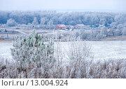 Купить «Вид на деревню морозным утром», фото № 13004924, снято 7 декабря 2014 г. (c) Валерий Апальков / Фотобанк Лори