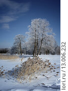 Купить «Зимний пейзаж», фото № 13006232, снято 17 августа 2018 г. (c) Уфимцева Екатерина / Фотобанк Лори