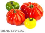 Купить «Разноцветные помидоры, Solanum lycopersicum», фото № 13046652, снято 15 апреля 2013 г. (c) Morgenstjerne / Фотобанк Лори