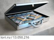 Купить «Чемодан с деньгами», фото № 13050216, снято 10 августа 2005 г. (c) михаил красильников / Фотобанк Лори