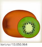Плоды киви. Стоковая иллюстрация, иллюстратор Буркина Светлана / Фотобанк Лори