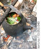 Купить «Лесной чай», фото № 13053040, снято 13 сентября 2013 г. (c) Любецкая Марина / Фотобанк Лори