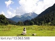 Купить «Альпийский луг», фото № 13063588, снято 12 августа 2014 г. (c) Любецкая Марина / Фотобанк Лори