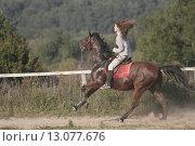 Лошадь на скаку (2005 год). Редакционное фото, фотограф Дмитрий Пискунов / Фотобанк Лори