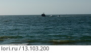 Купить «View of a submarine in South Pacific Ocean», фото № 13103200, снято 20 ноября 2013 г. (c) Ingram Publishing / Фотобанк Лори