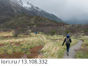 Купить «Hikers at W-Trek, Torres del Paine National Park, Patagonia, Chile», фото № 13108332, снято 27 ноября 2013 г. (c) Ingram Publishing / Фотобанк Лори