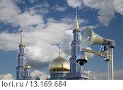 Купить «Московская соборная мечеть, одна из крупнейших мечетей России и Европы, Москва», фото № 13169684, снято 6 ноября 2015 г. (c) Владимир Журавлев / Фотобанк Лори