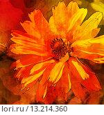 Купить «art floral vintage orange, red and brown background with asters», фото № 13214360, снято 8 июля 2013 г. (c) Ingram Publishing / Фотобанк Лори