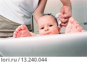 Купить «baby girl taking a bath in sink», фото № 13240044, снято 4 июля 2020 г. (c) age Fotostock / Фотобанк Лори