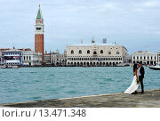 Купить «A bride in Venice and on background Campanile and Doges palace ,Italy,Europe», фото № 13471348, снято 28 мая 2008 г. (c) age Fotostock / Фотобанк Лори