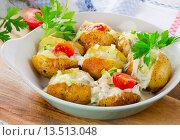 Купить «Baked potatoes with vegetables and sour cream.», фото № 13513048, снято 29 сентября 2015 г. (c) Tatjana Baibakova / Фотобанк Лори
