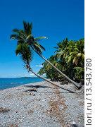 Купить «Beach on Savo Island, Savo, Solomon Islands, Pacific», фото № 13543780, снято 18 марта 2019 г. (c) age Fotostock / Фотобанк Лори