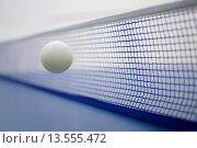 Купить «Table tennis», фото № 13555472, снято 24 апреля 2019 г. (c) age Fotostock / Фотобанк Лори