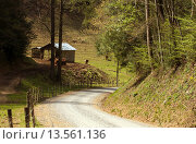 Road Thru the Mouintains, Pisgah National Forest, North Carolina. Стоковое фото, фотограф Jerry Whaley / age Fotostock / Фотобанк Лори