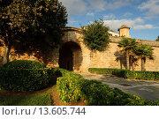 Купить «medieval gate, - Sa Portella-, Palma, Mallorca, Balearic Islands, Spain, Europe», фото № 13605744, снято 18 марта 2018 г. (c) age Fotostock / Фотобанк Лори