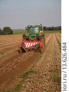Купить «Tractor pulling machinery to lift onions in a field, Alderton, Suffolk, England», фото № 13626484, снято 27 апреля 2018 г. (c) age Fotostock / Фотобанк Лори