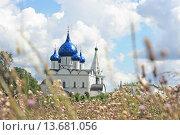 Богородице-Рождественский монастырь в Суздале (2012 год). Стоковое фото, фотограф Русских Наталья / Фотобанк Лори
