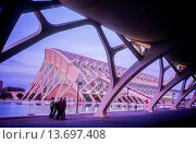 Купить «Príncipe Felipe Sciences Museum,City of Arts and Sciences, by S  Calatrava  Valencia  Spain», фото № 13697408, снято 27 февраля 2020 г. (c) age Fotostock / Фотобанк Лори