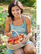 Купить «Woman with basket filled with freshly harvested vegetables.», фото № 13742468, снято 19 февраля 2018 г. (c) age Fotostock / Фотобанк Лори