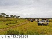 Купить «lion (Panthera leo), lots of safari cars gathered near a single resting lion, Tanzania, Serengeti NP», фото № 13786868, снято 16 февраля 2019 г. (c) age Fotostock / Фотобанк Лори