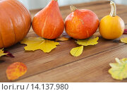 Купить «close up of pumpkins on wooden table at home», фото № 14137980, снято 19 октября 2015 г. (c) Syda Productions / Фотобанк Лори
