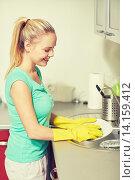 Купить «happy woman washing dishes at home kitchen», фото № 14159412, снято 25 января 2015 г. (c) Syda Productions / Фотобанк Лори