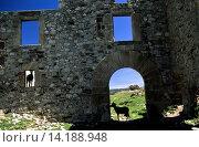 Купить «Ruins of Tagamanent castle. Montseny natural park. Barcelona, Catalunya.Spain.», фото № 14188948, снято 23 марта 2019 г. (c) age Fotostock / Фотобанк Лори
