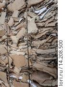 Купить «Paper recycling», фото № 14208500, снято 18 апреля 2019 г. (c) age Fotostock / Фотобанк Лори